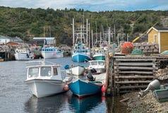 Kleiner Hafen in Neufundland stockbild