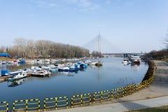 Kleiner Hafen und Ansicht zur Ada-Brücke auf dem Fluss Sava in Belgrad, Serbien Lizenzfreies Stockfoto