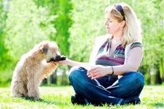 Kleiner Hund geben Vorderfuß Lizenzfreies Stockbild