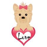 Kleiner Hund mit Herzen Stockfotografie