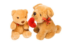 Kleiner Hund und Teddybär Stockbild