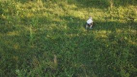 Kleiner Junge auf dem Rasen stock video