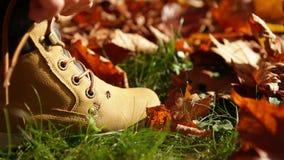 Kleiner Junge bindet die Stiefelspitzee während sonniger Herbsttagesc$gehens des im Freien und die Ameise, die auf den Stiefel kr stock footage