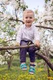 Kleiner Junge blond in einem weißen Hemd und in blauen Hosen, die auf geblühtem Baum sitzen Lizenzfreie Stockbilder