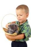 Kleiner Junge, das eine graue Miezekatze in der Flechtweide pet Stockfotografie