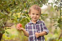 Kleiner Junge, der Apfel hält Stockbild