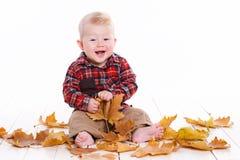 Kleiner Junge, der auf dem Boden mit Ahornblättern spielt Stockfoto