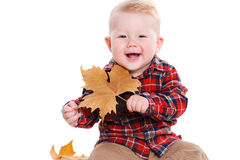 Kleiner Junge, der auf dem Boden mit Ahornblättern spielt Stockbilder
