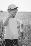 Kleiner Junge, der auf dem Gebiet spielt Stockfotos