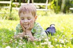 Kleiner Junge, der auf dem Kleeblumengebiet liegt Lizenzfreies Stockfoto