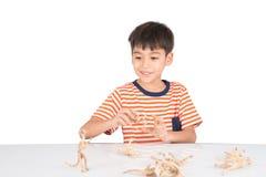 Kleiner Junge, der auf dem Tisch Innentätigkeiten des Dinosaurierfossil-Spielzeugs spielt Lizenzfreie Stockfotografie
