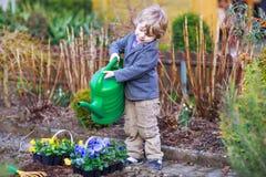 Kleiner Junge, der Blumen im Garten im Garten arbeitet und pflanzt Stockfotografie