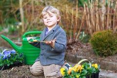 Kleiner Junge, der Blumen im Garten im Garten arbeitet und pflanzt Stockfotos