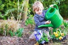 Kleiner Junge, der Blumen im Garten im Garten arbeitet und pflanzt Stockbilder