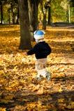 Kleiner Junge, der durch das orange Laub läuft Stockbild