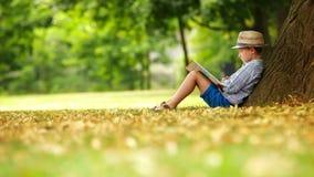 Kleiner Junge, der ein Buch sitzt am Fuß eines großen Lindenbaums liest stock footage