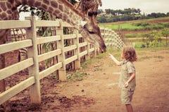 Kleiner Junge, der eine Giraffe am Zoo einzieht stockbild