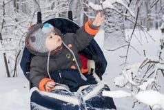 Kleiner Junge, der eine Pferdeschlittenfahrt genießt Lizenzfreies Stockfoto