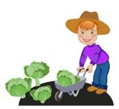 Kleiner Junge, der in einem Gemüsebauernhof arbeitet Stockfotos