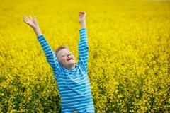 Kleiner Junge, der für Freude auf einer Wiese an einem sonnigen Tag springt Stockfoto