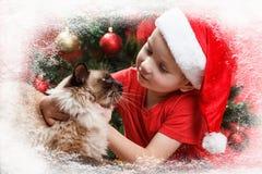 Kleiner Junge der Heiligen Nacht mit einem Sankt-Hut und kleine Katze schauen durch das Fenster Frost und Schnee auf dem Fenster Lizenzfreie Stockfotos