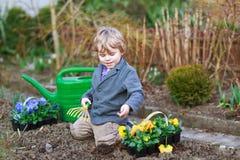 Kleiner Junge, der herein Blumen im Garten arbeitet und pflanzt Stockfotos