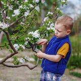 Kleiner Junge, der im Frühjahr Garten bearbeitet Lizenzfreie Stockfotografie