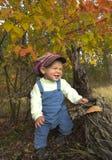 Kleiner Junge, der mit Blättern am Herbstpark spielt Stockfotografie