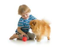 Kleiner Junge, der mit dem Hundspitz, lokalisiert auf weißem Hintergrund spielt stockfotografie