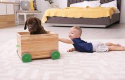 Kleiner Junge, der mit entzückender Schokolade labrador retriever spielt lizenzfreies stockfoto