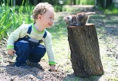 Kleiner Junge, der mit Kätzchen spielt Lizenzfreie Stockfotografie