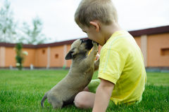Kleiner Junge, der mit seinem netten Hund küßt Stockfoto
