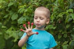 Kleiner Junge des Porträts, der Himbeeren von seinen Fingern isst Lizenzfreies Stockbild