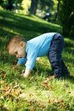 Kleiner Junge draußen Stockbild