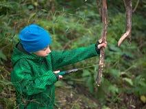 Kleiner Junge in einem Kappe und Jacke Handsaw, der trockenen Baumstumpf sägt lizenzfreies stockfoto
