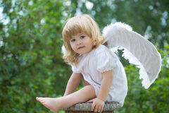 Kleiner Junge gekleidet als Engel Stockfotografie