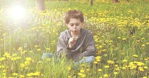 Kleiner Junge gesetzt in einer Wiese, die auf einer Blume durchbrennt Lizenzfreie Stockfotos