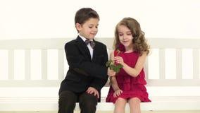 Kleiner Junge gibt seiner Freundin eine Rose, nimmt sie an und lächelt Weißer Hintergrund Langsame Bewegung Abschluss oben stock video
