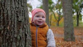 Kleiner Junge hält an zum großen Baum im Herbststadtpark, glückliche Kindheit draußen stock video