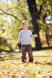 Kleiner Junge am Herbstpark stockfotos