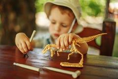 Kleiner Junge möchte ein Archäologe sein Stockfoto