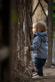 Kleiner Junge mit blauen Augen auf einem Winterweg lizenzfreies stockfoto