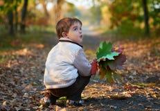 Kleiner Junge mit bunten Blättern Stockfoto