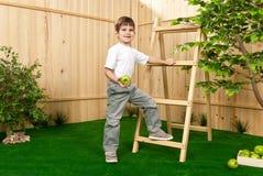 Kleiner Junge mit einem Apfel im Garten Stockfotos