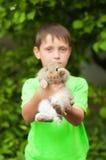 Kleiner Junge mit einem Kaninchen in seinen Händen Stockbilder