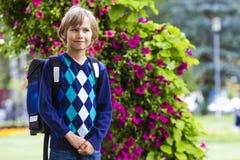 Kleiner Junge mit einem Rucksack gehen zur Schule Rückseitige Ansicht Lizenzfreies Stockbild