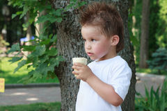 Kleiner Junge mit Eiscreme Lizenzfreie Stockbilder