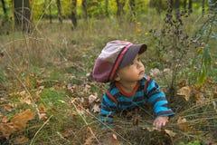 Kleiner Junge mit großer Kappe im Herbstpark Stockfotografie