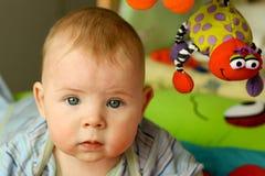 Kleiner Junge mit Spinne Stockfotos
