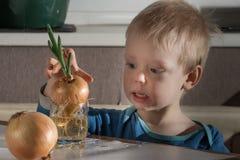 Kleiner Junge mit zwei Birnen von frischen Zwiebeln Stockfotografie